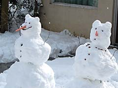 cute snow men
